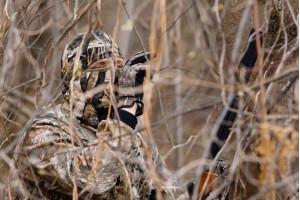 Відкриття сезону полювання 2020